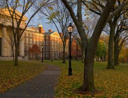 Brown University Writing Service: Buy an Cheap Essay Papers