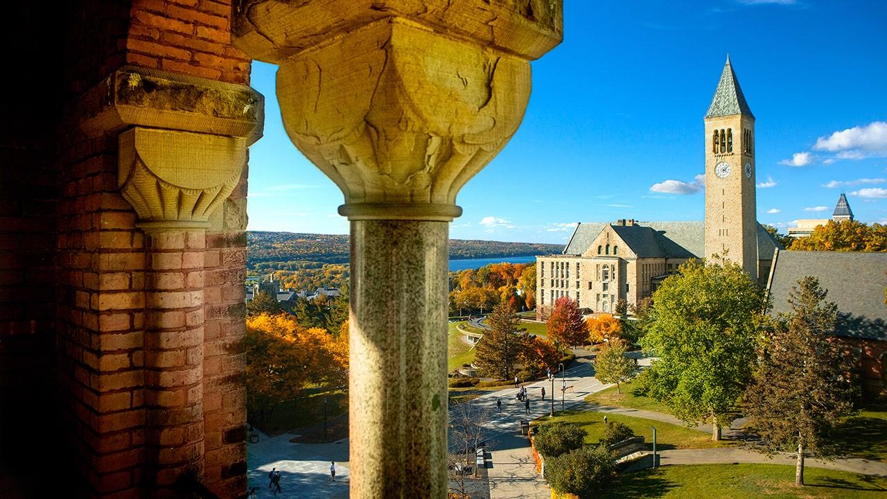 Cornell University Writing Service: Buy Cheap & Original Essay Paper