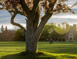 Grinnell College Writing Service: Buy Cheap Essay and Research Paper