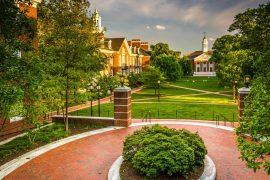 Johns Hopkins University Writing Service: Buy Cheap Essay Paper
