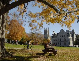 Williams College Writing Service: Buy Original Essay Papers
